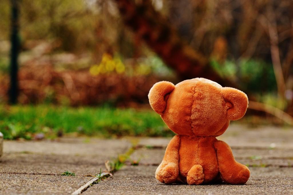 bear-1272800_1920